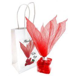 Mikados Forma Flor Frutos Rojos Deco Hogar2,06 €