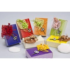 Cajas Rectangulares Colores Surtidos con Jabón